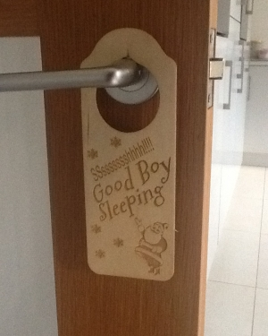 good boy sleeping christmas door handle